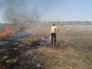 в севастополе сгорело 5 тысяч квадратов территории