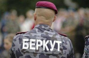 беркут севастополь