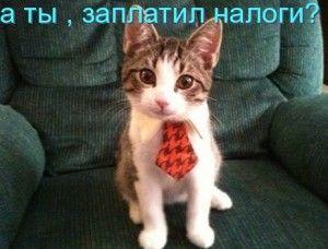 налоги севастополь