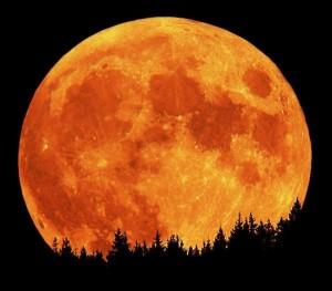 лунное затмение украина 2013