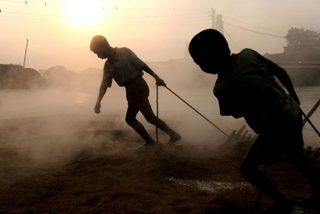 детский труд в Севастополе