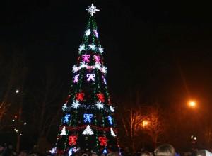 елка в Севастополе