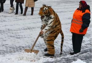 уборка снега в Севастополе
