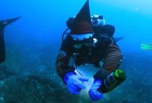 новый год под водой Севастополь