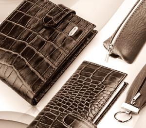 кошелек, сумка, портмоне, визитница;