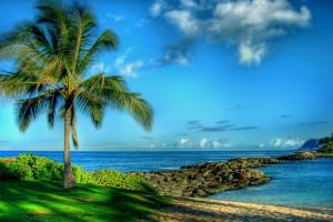 Семья Болдуин имеет историческое ранчо в Гавайе