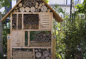 открывается гостиница для насекомых