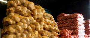 запрещен ввоз картошки из украины