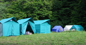 заселяют беженцев в палатки