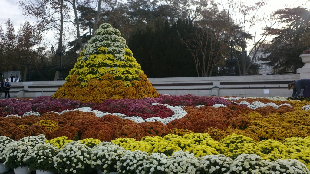 Бал хризантем в Севастополе 2014. Фото