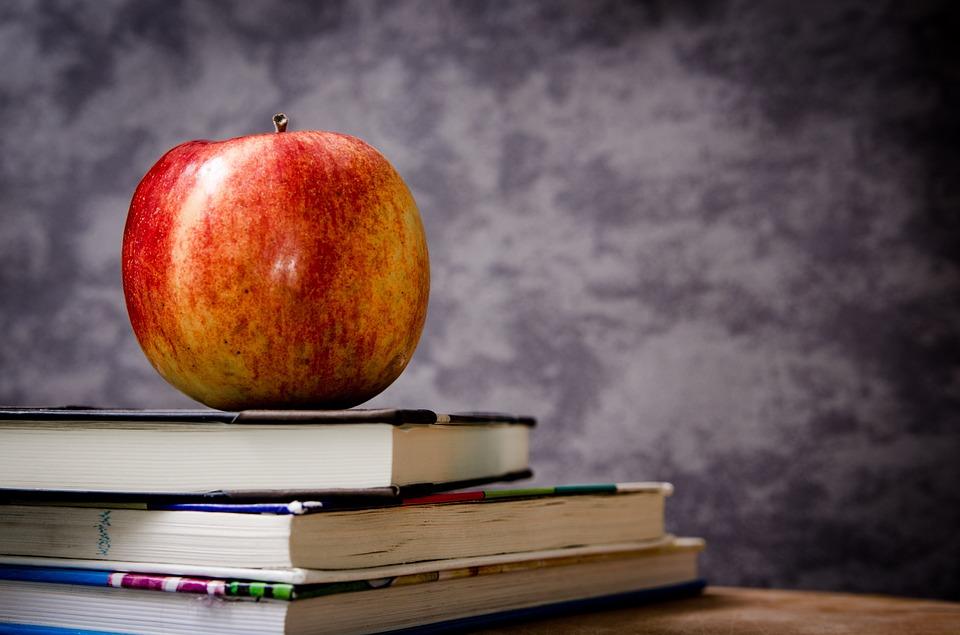 Особенности школьных досок