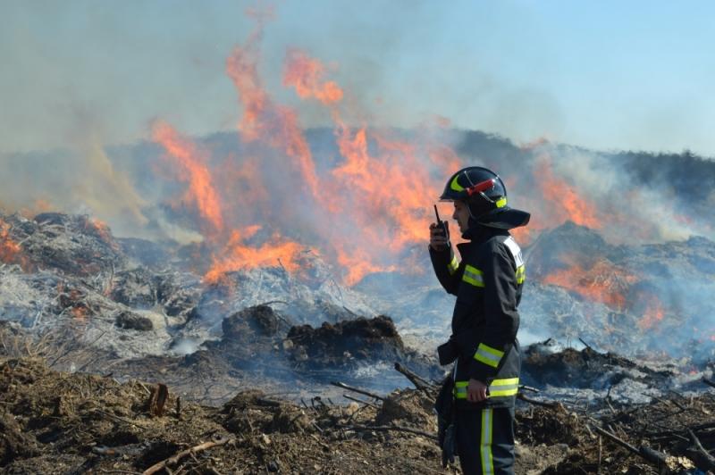 В Севастополе увеличилось количество пожаров