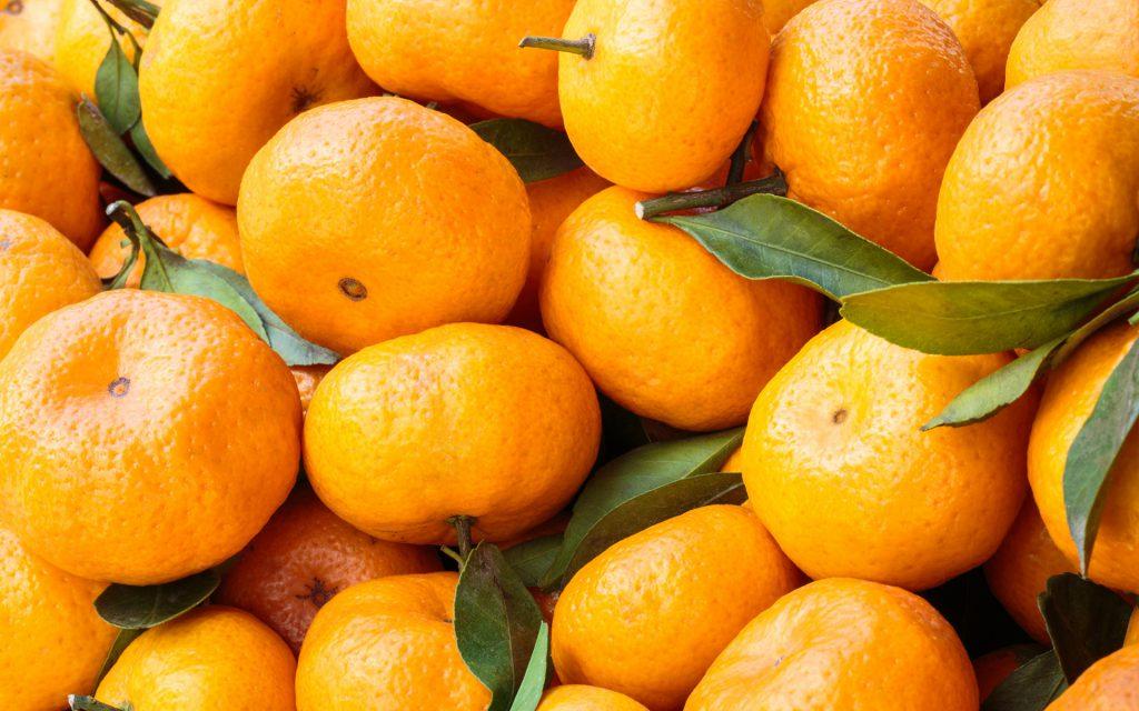 Роспотребнадзор забраковал привезенные в Севастополь турецкие мандарины