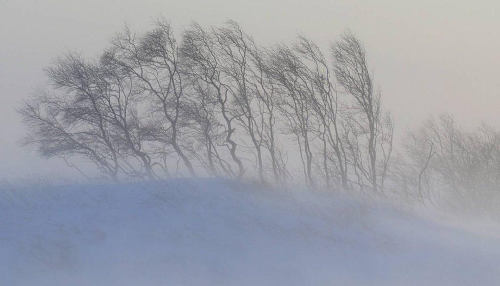 На Крым опять надвигается сильный снег