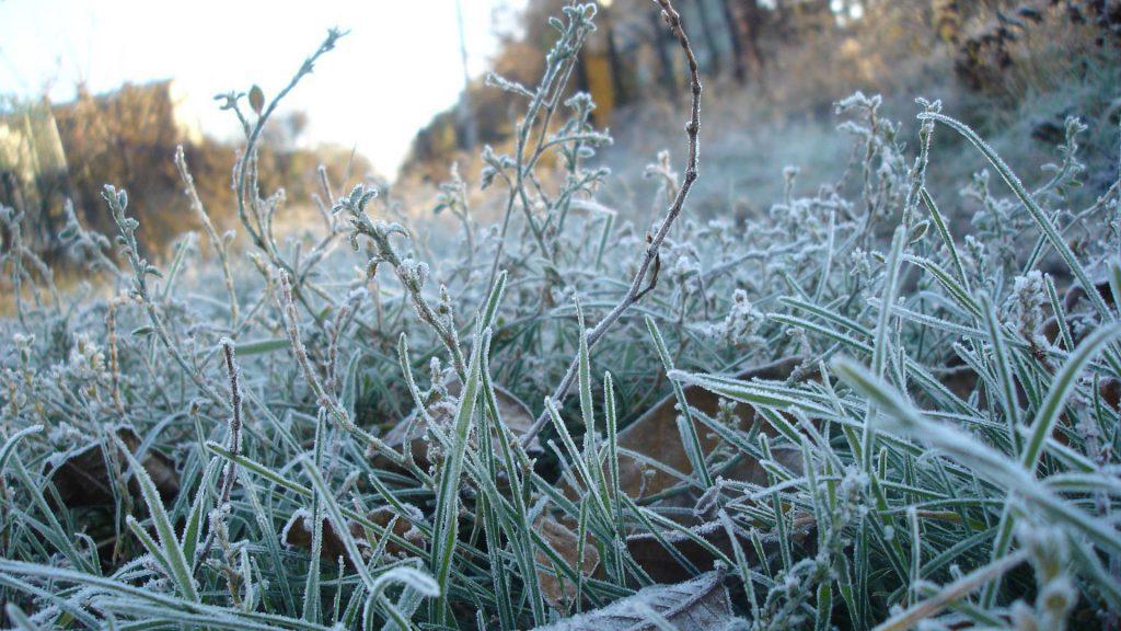 Севастопольцам обещают до -8° мороза