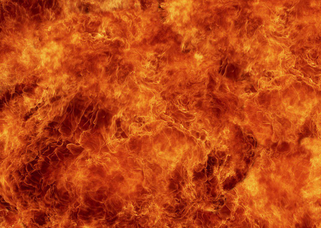 В Симферополе сожгли польский сельдерей