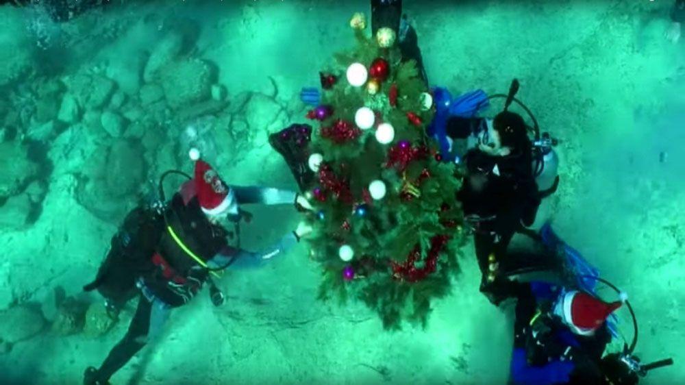 В Крыму на дне Черного моря установили новогоднюю елку
