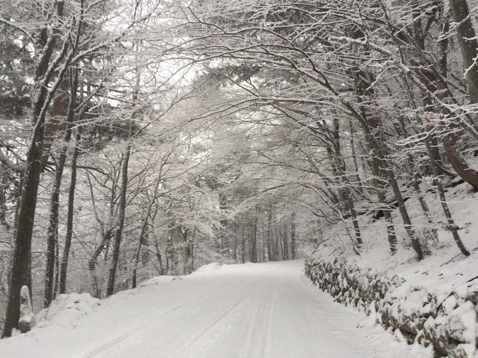 На Ай-Петри из-за отсутствия снега отменили «Праздник зимы»