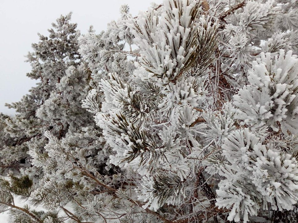 Крымчане пережили самую холодную ночь этой зимы