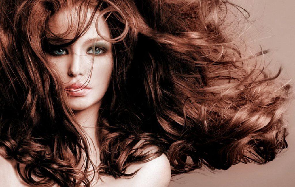 Профессиональные фены выбор парикмахера и домохозяйки