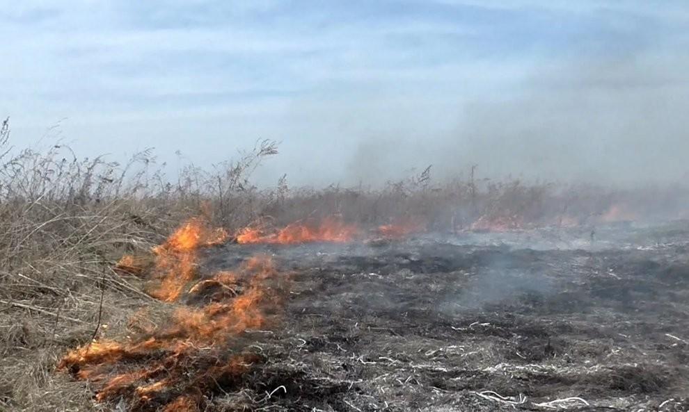На лавандовом поле в Учкуевке загорелся сухостой